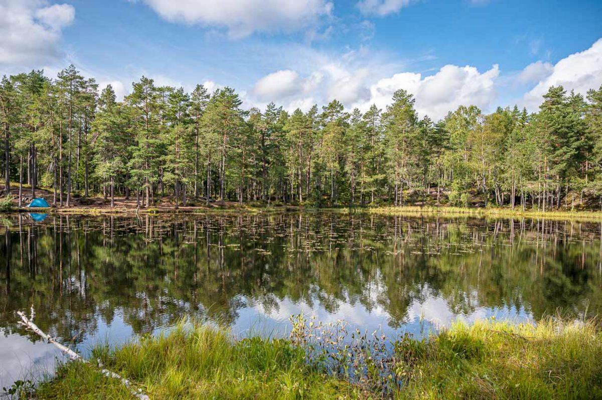 Utsikt utover Nedre Blanksjø