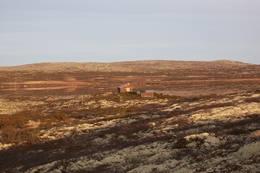 Lyngbua i høstfjellet , 8.11.2011  - Foto: Eva Breuer