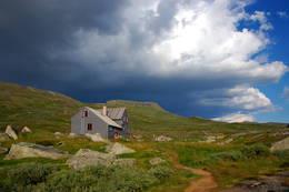 Hadlaskard på Hardangervidda Vest - Foto: Håvard Mørch Hunskaar