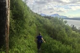 kraftlinjetraseen er fin for joggeturer! Joggende er Aslak Johansen. -  Foto: Tor Andre Skjelbakken