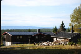 Lageråkvisla på sommeren - Foto: Margrete Ruud Skjeseth