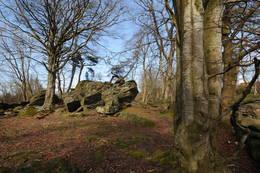 Utfordrende natur- og kulturområde ved Lassa - Foto: Kjell Helle-Olsen