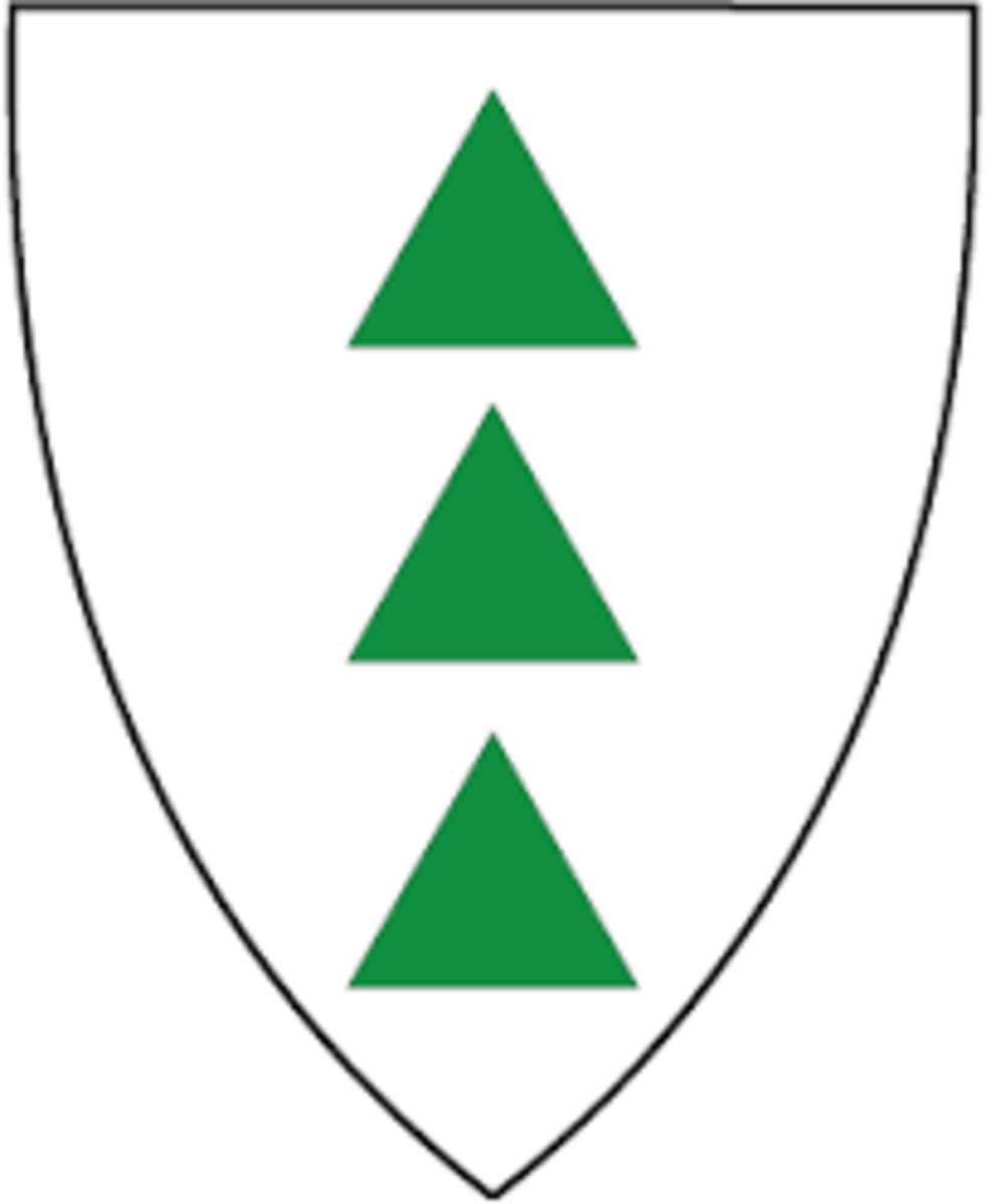 Profilbilde for Grong kommune