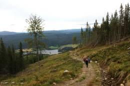 På vei ned traktorveien mot Olhovd. Utsikt mot Kråkefjorden. - Foto: Hilde Roland
