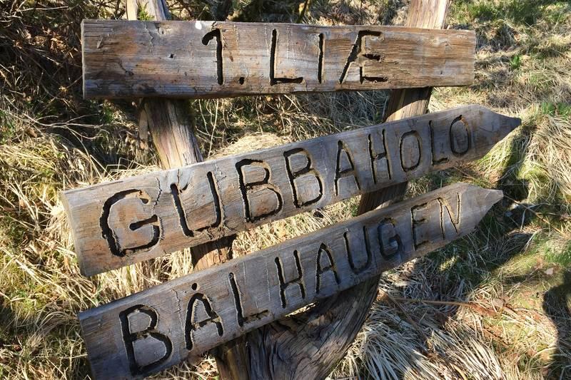 Omtrent halvvegs kjem du til skilt som viser til Førstelia, Gubbaholo og Bålshaugen. Her skal du fortsetja rett fram (og ikkje følgja skilta mot høgre).