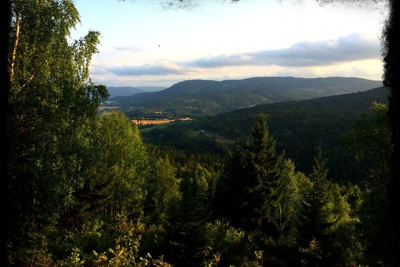 Utsikt mot Svarstad fra vestsiden av Kråkemoåsen.