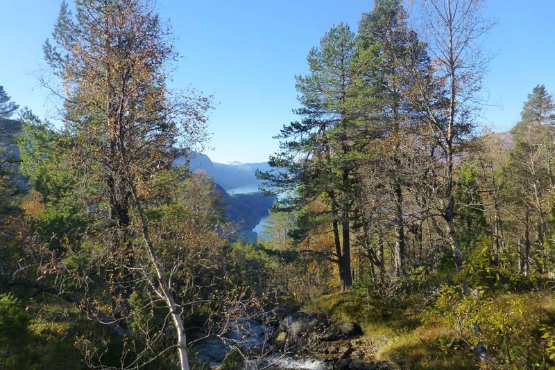 Utsikt mot Hornindalsvatnet