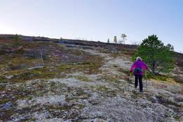 Snart på toppen - lettgått terreng. - Foto: Kjell Fredriksen