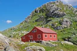 Sommer ved Høgabu. - Foto: Torill Refsdal Aase