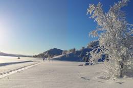Pipesjøen -  Foto: Guttorm Spillum