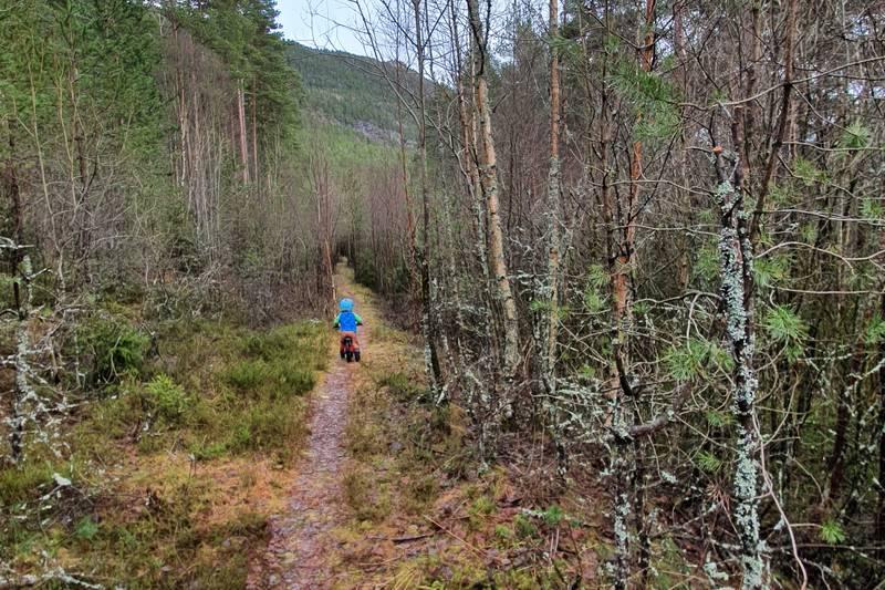 Stien som går langs naturreservatet gir deg fin utsikt til Kloppemyrane