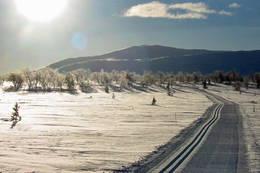 Bilde fra Fjelltur.no - Os kommune. -  Foto: Ukjent