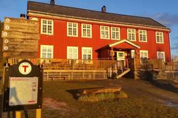 Vårstemning - Foto: Jesper Jørgensen