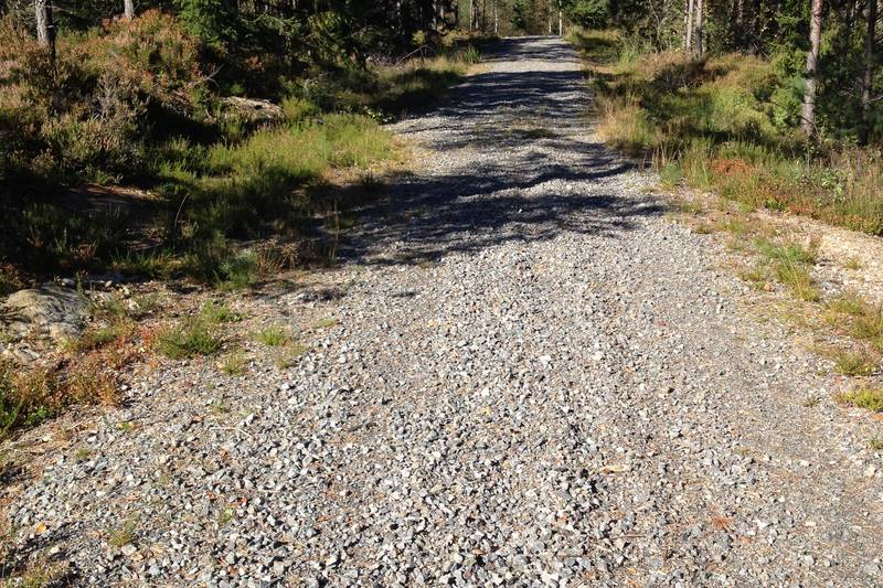 Flott vei sør for Eikelandsvannet