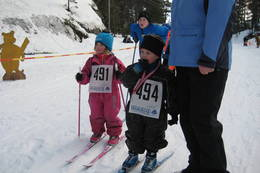 Fra Ole Brumm-rennet på Årstøl skiarena. - Foto: Floke Bredland