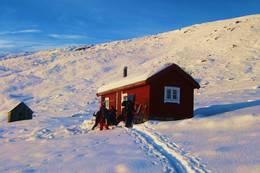 Ettermiddagssol på Grøssete  - Foto: Kristin Wollan