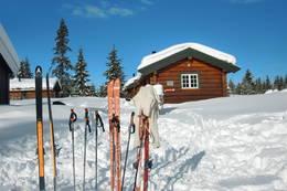 Strålende vinterdag på Åkersætra - Foto: Halvor Johansen Mære