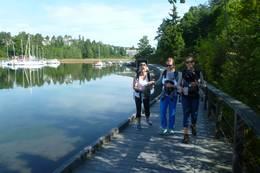 Meisetur på Fornebu med Bærum Turlag sommer 2016 -  Foto: Signe Riemer-Sørensen