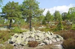 Denne røysa ligger rett ovenfor Gamle Hadelandsvei ved Karlshaugene - Foto: Ståle Pinslie