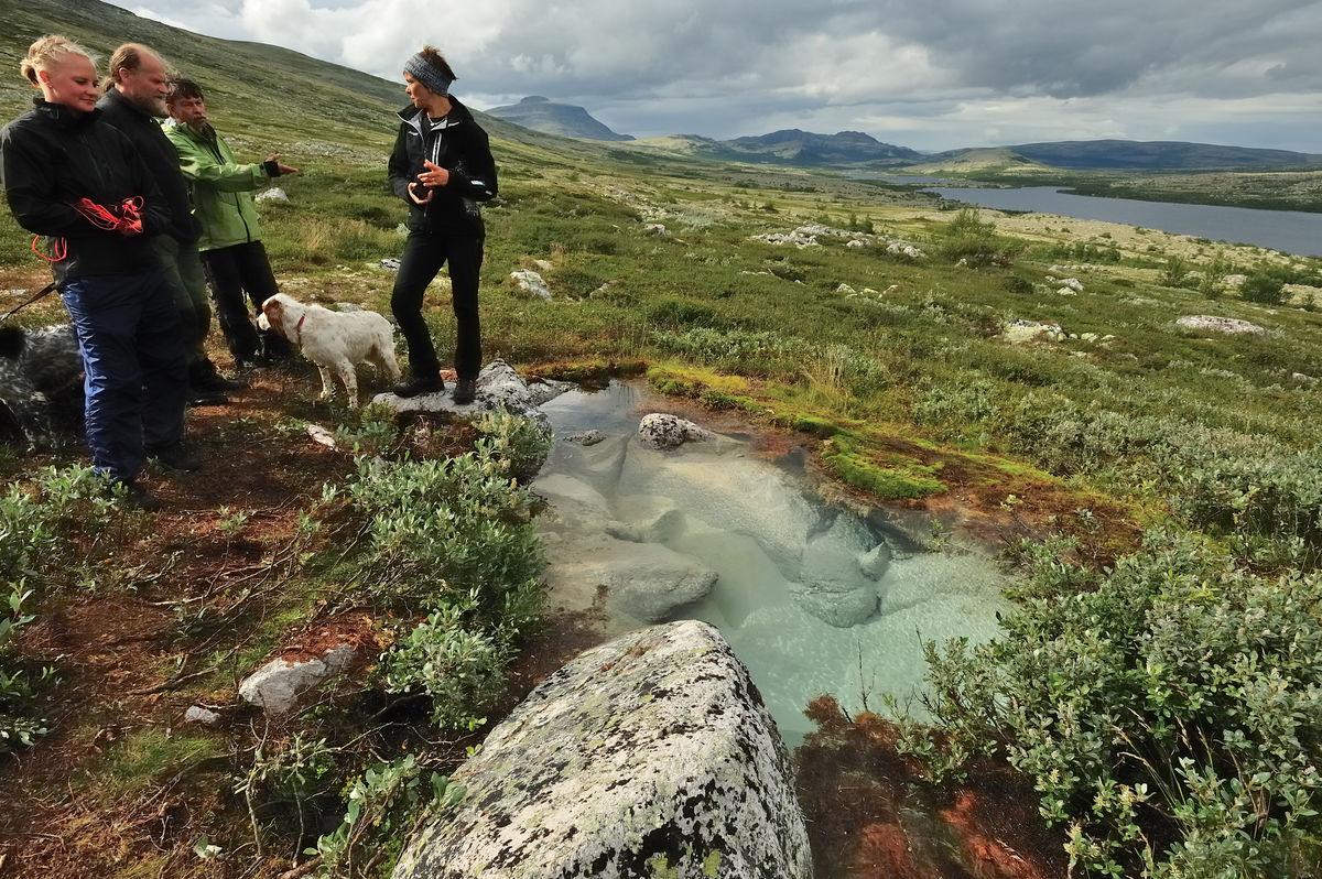 I Alvdal Vestfjell er det mange friske grunnvannskilder