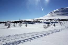 Vi har vinter merkede løyper, og sikre snøforhold - Foto: