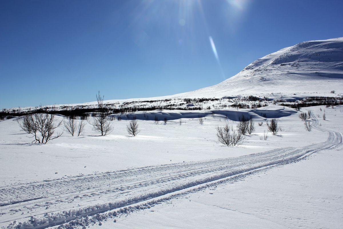 Vi har vinter merkede løyper, og sikre snøforhold