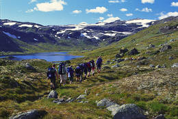 Turfølge i Grøndalen, på vei fra Hallingskeid, over Vossaskavlen og til Kaldevass - Foto: Torill Refsdal Aase