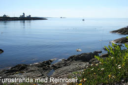 Furustranda  - Foto: Helge Oland