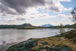 Her nede er klippetanga satt ut - Foto: Kjell Fredriksen