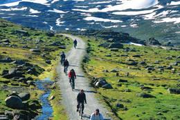 Sykkeltur på Rallarveien, ved Hallingskeid. - Foto: Helge Sunde