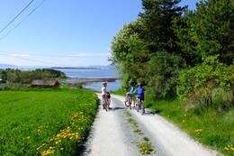 Holmberget med Tautra i bakgrunnen. - Foto: Oddlaug Marie Lindgaard