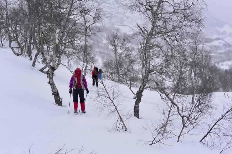 På vei ned liene mot Skreå - Foto: Preben Falck
