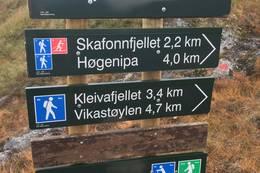 Skilting på Nyken - Foto: Anne Cecilie Kapstad