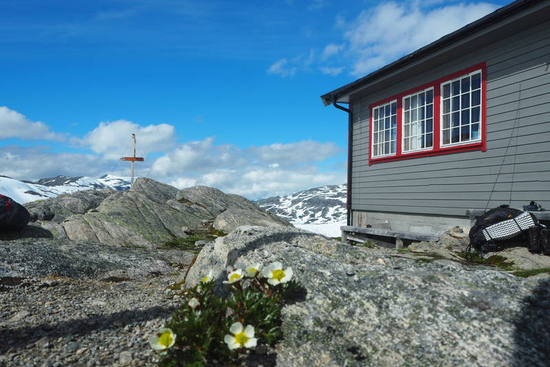 Fjellisoleie på Danskehytta i strålende sol.