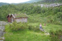 Frå Midtbøstøylen -  Foto: Jofrid Sundal