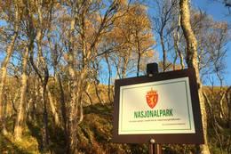 Sjunkhatten nasjonalpark -  Foto: Stefan Kersting