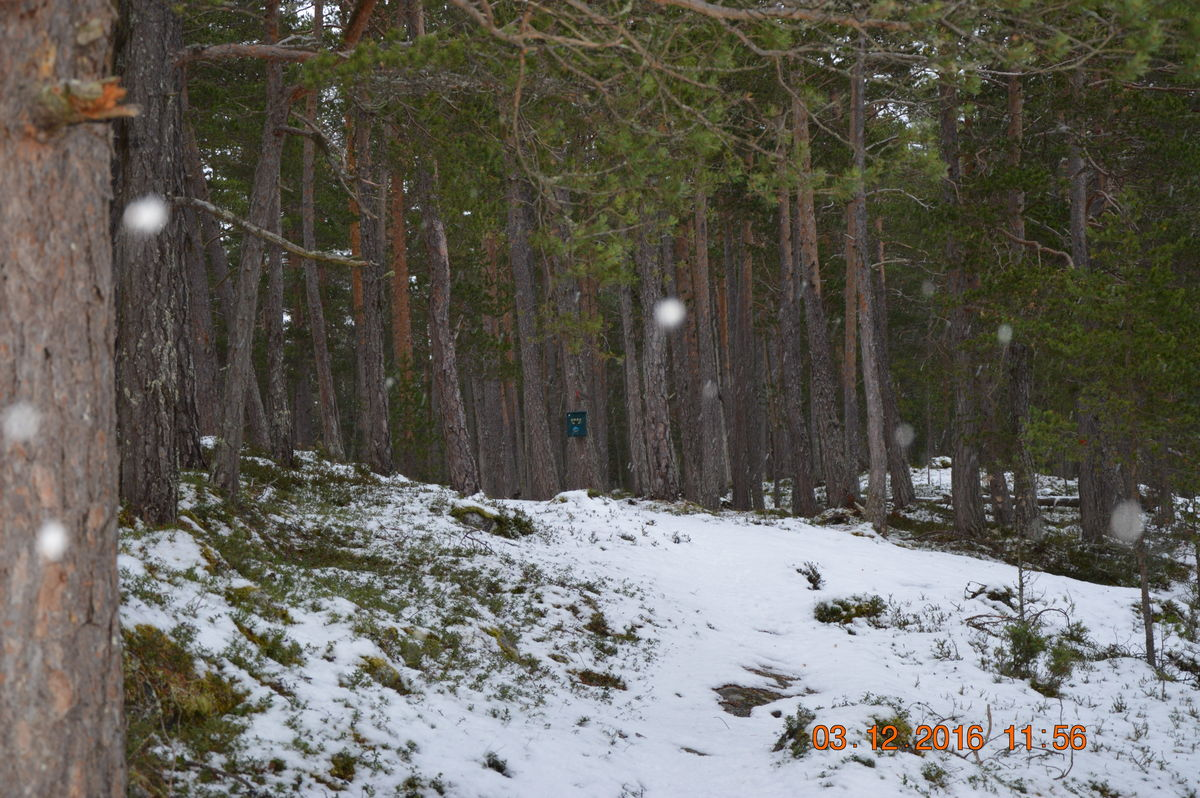 Passerer St. Olavskjelda