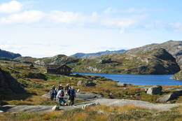 Nipebu, Indre Sunnfjord Turlag, 500 moh.  - Foto: agnar åsnes