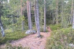 Her er ett kryss, på vei ned igjen er det lett å gå feil her. Når går ned, skal du holde til venstre. - Foto: Einar Vestnes