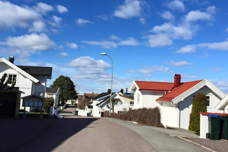 Trehusbebyggelsen i Hagemannsveien