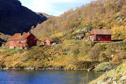 Storavassbu -  Foto: Lars K. Gjerde