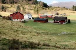 Start i Virkesdalen, mange går mellom låve og gardshus opp skogsveg -  Foto: Marte Sleire Hatlevik
