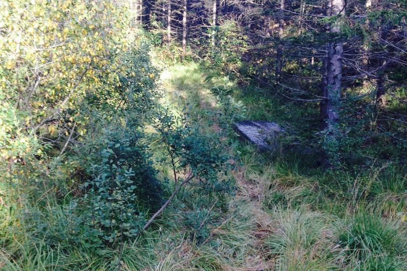 Ta av til venstre der du ser en pram liggende langs stien