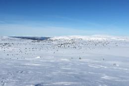 Fra toppen av Kriksfjell - Foto: Jan Gunnar Bjørke