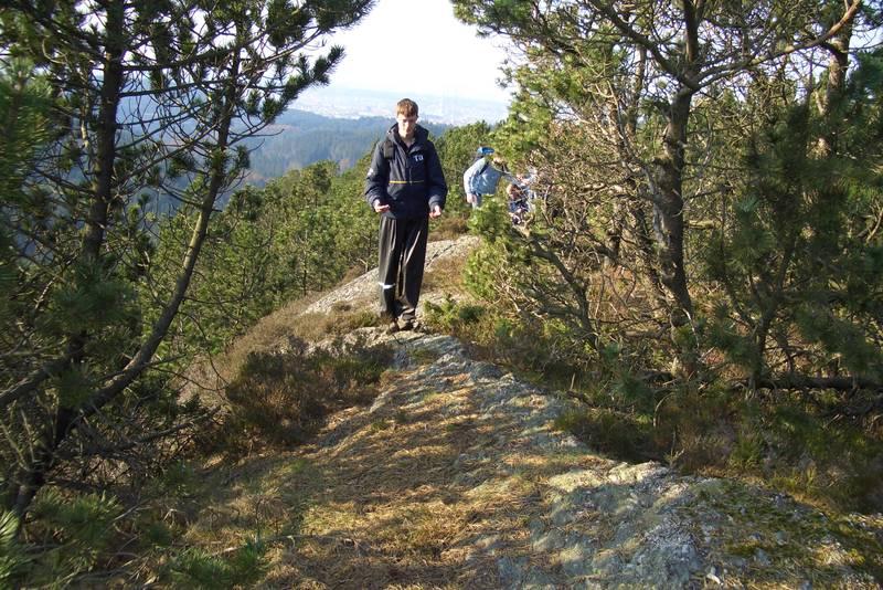 På fjellryggen mot Jøtnafjell