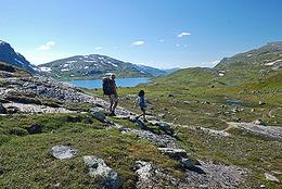 Grønndalen - Foto: Terje Rakke