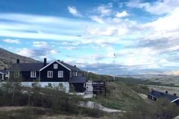 Sommer Øvre Dørålseter  - Foto: