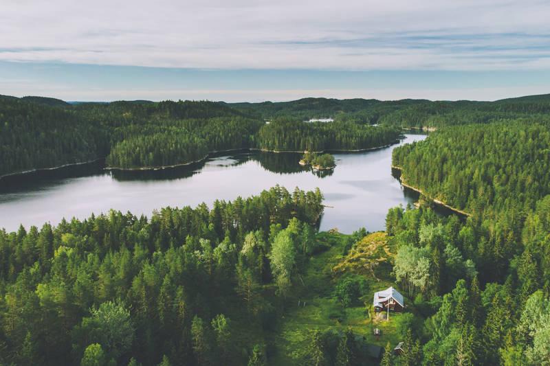 Hytta ligger vakkert til skogen ved Børtevann