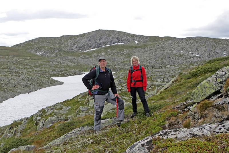 Et karrig landskap på vestsida av Vinkeltjønn. Skardsnibba 1486 mohbak.
