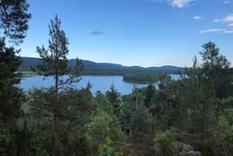 Utsiktspunktet på Sagkollen - Foto: Birgit Vildalen